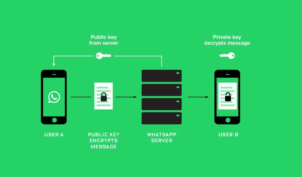 android-whatsapp-internet